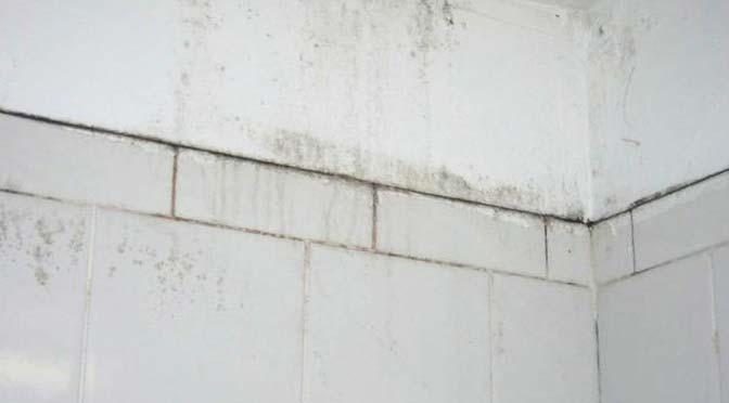 Schimmel in badkamer verwijderen - Beton waterdicht maken